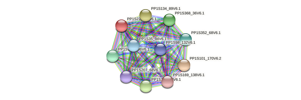 PP1S223_50V6.1 protein (Physcomitrella patens) - STRING interaction network
