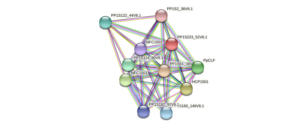HDA1505 protein (Physcomitrella patens) - STRING interaction network