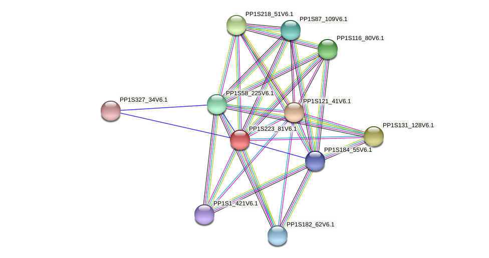 PP1S223_81V6.1 protein (Physcomitrella patens) - STRING interaction network