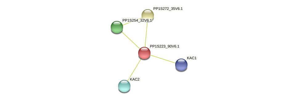 PP1S223_90V6.1 protein (Physcomitrella patens) - STRING interaction network