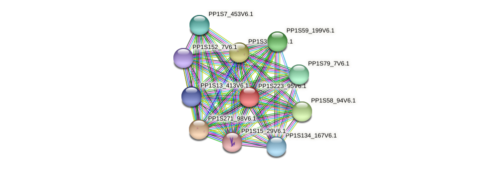 PP1S223_95V6.1 protein (Physcomitrella patens) - STRING interaction network