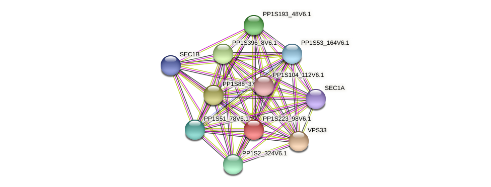 PP1S223_98V6.1 protein (Physcomitrella patens) - STRING interaction network