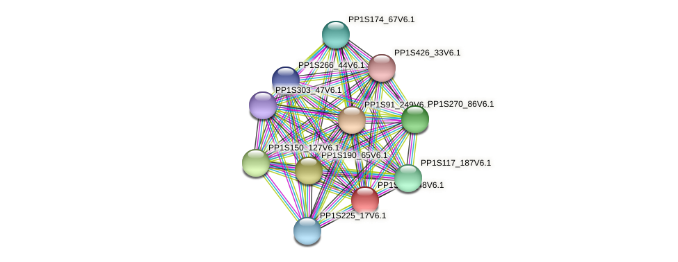 PP1S224_48V6.1 protein (Physcomitrella patens) - STRING interaction network
