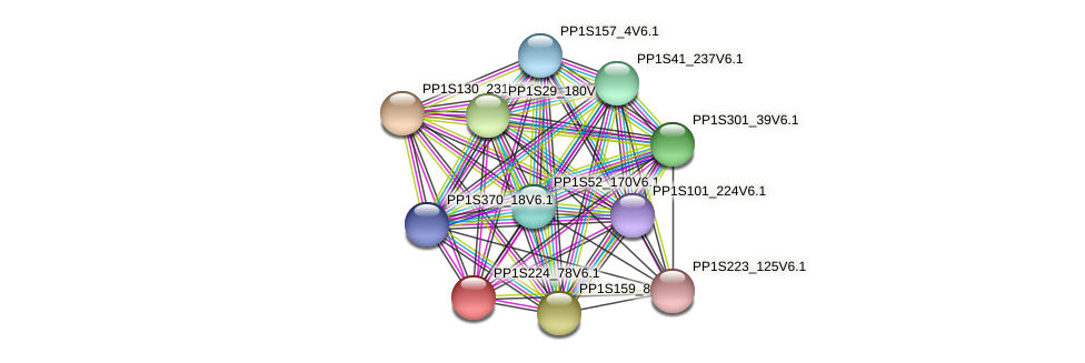 PP1S224_78V6.1 protein (Physcomitrella patens) - STRING interaction network