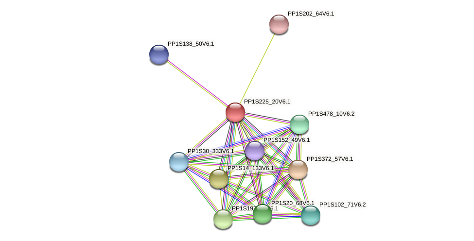 PP1S225_20V6.1 protein (Physcomitrella patens) - STRING interaction network