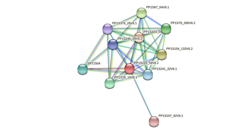 PP1S225_54V6.1 protein (Physcomitrella patens) - STRING interaction network