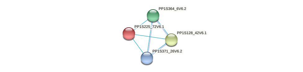 PP1S225_72V6.1 protein (Physcomitrella patens) - STRING interaction network