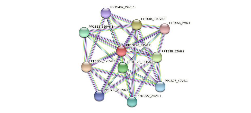 PP1S226_31V6.1 protein (Physcomitrella patens) - STRING interaction network