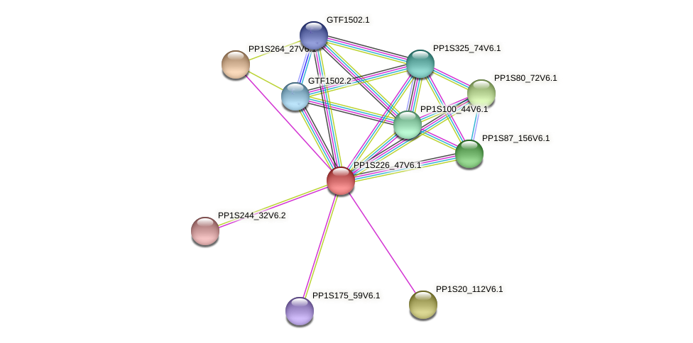 PP1S226_47V6.1 protein (Physcomitrella patens) - STRING interaction network