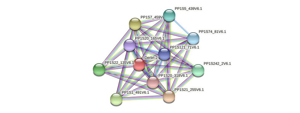 PP1S226_55V6.1 protein (Physcomitrella patens) - STRING interaction network