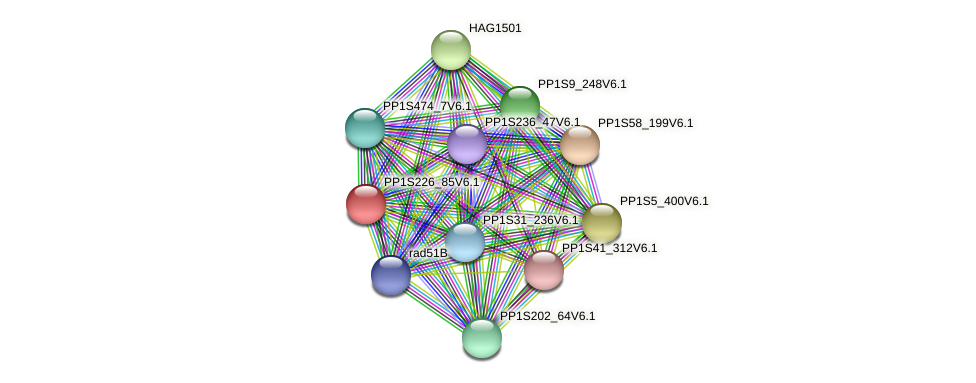 PP1S226_85V6.1 protein (Physcomitrella patens) - STRING interaction network