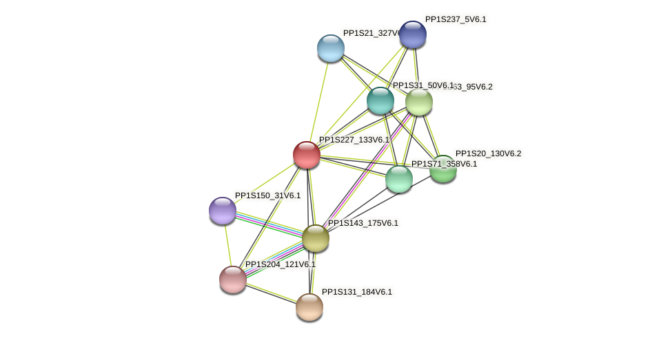 PP1S227_133V6.1 protein (Physcomitrella patens) - STRING interaction network