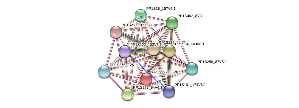 PP1S227_55V6.1 protein (Physcomitrella patens) - STRING interaction network