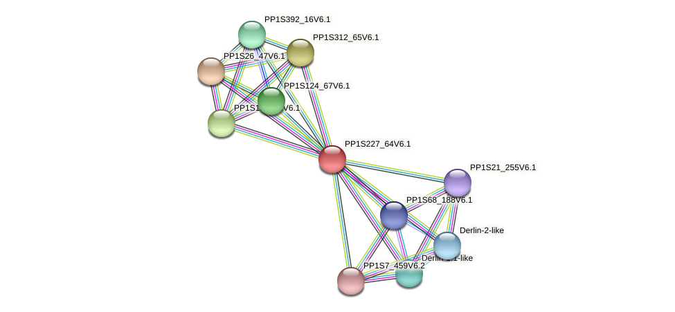 PP1S227_64V6.1 protein (Physcomitrella patens) - STRING interaction network