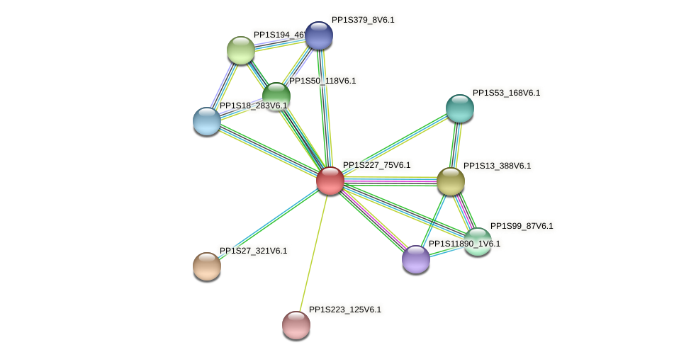 PP1S227_75V6.1 protein (Physcomitrella patens) - STRING interaction network