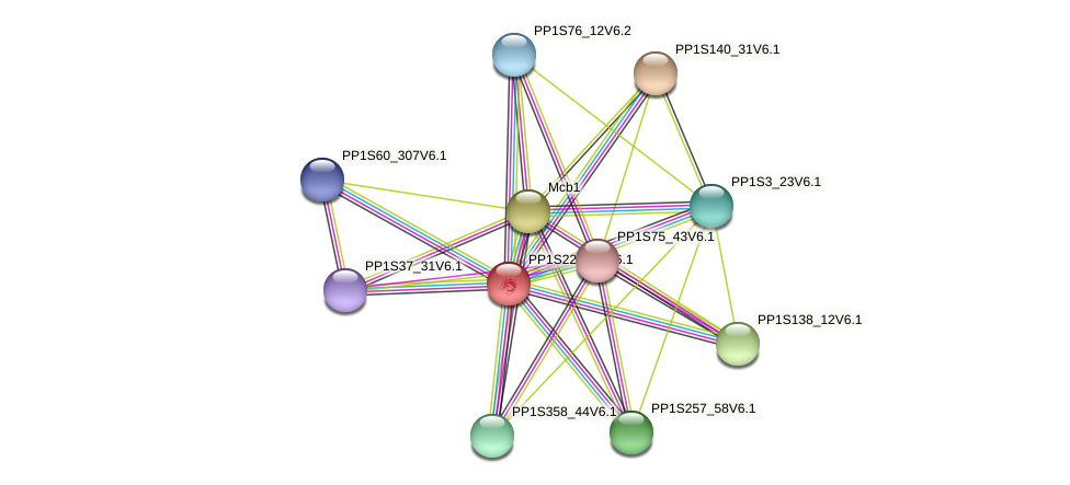 PP1S227_93V6.1 protein (Physcomitrella patens) - STRING interaction network
