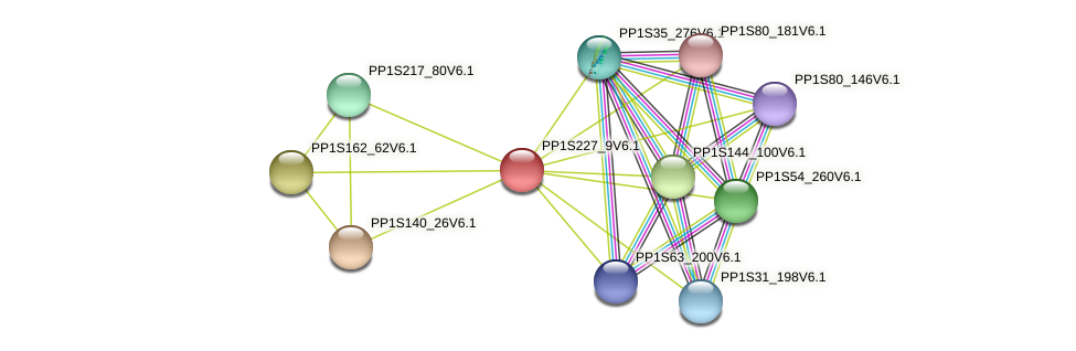 PP1S227_9V6.1 protein (Physcomitrella patens) - STRING interaction network