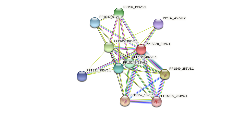 PP1S228_21V6.1 protein (Physcomitrella patens) - STRING interaction network