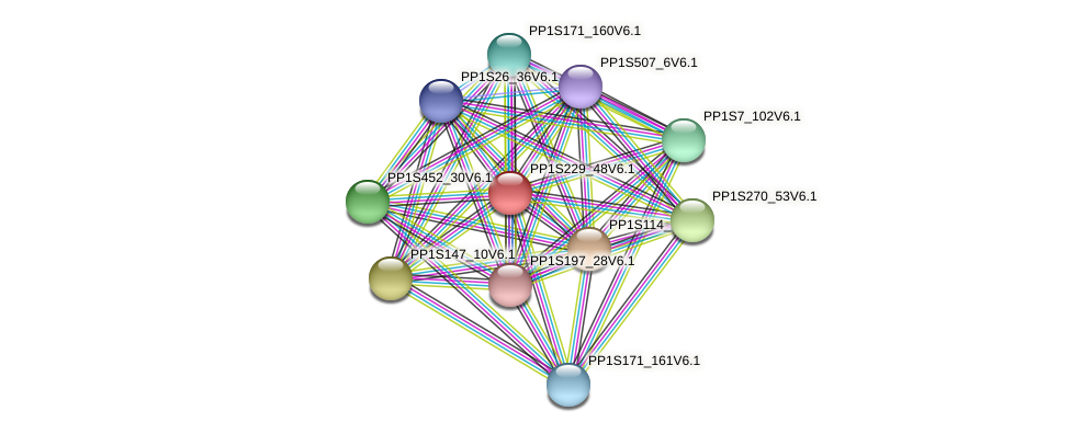 PP1S229_48V6.1 protein (Physcomitrella patens) - STRING interaction network
