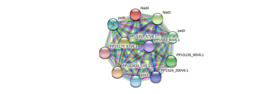 nad4 protein (Physcomitrella patens) - STRING interaction network