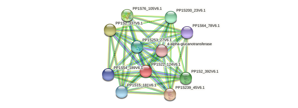 PP1S22_124V6.1 protein (Physcomitrella patens) - STRING interaction network