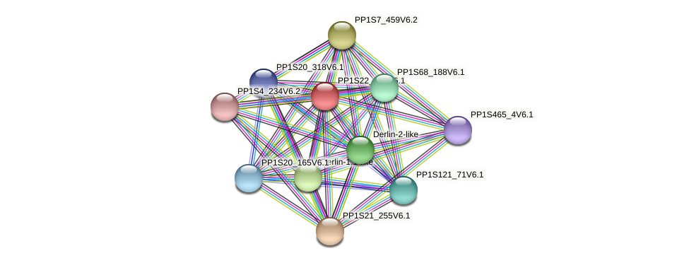 PP1S22_135V6.1 protein (Physcomitrella patens) - STRING interaction network