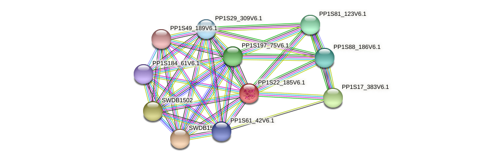 PP1S22_185V6.1 protein (Physcomitrella patens) - STRING interaction network