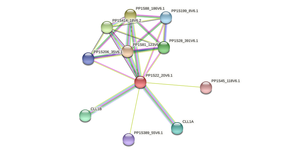 PP1S22_20V6.1 protein (Physcomitrella patens) - STRING interaction network