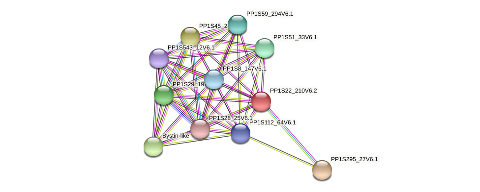 PP1S22_210V6.2 protein (Physcomitrella patens) - STRING interaction network