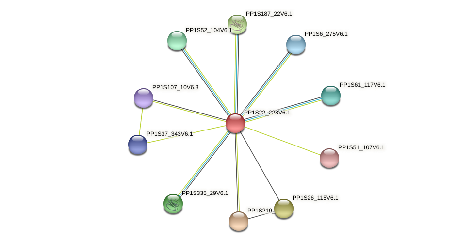 PP1S22_228V6.1 protein (Physcomitrella patens) - STRING interaction network