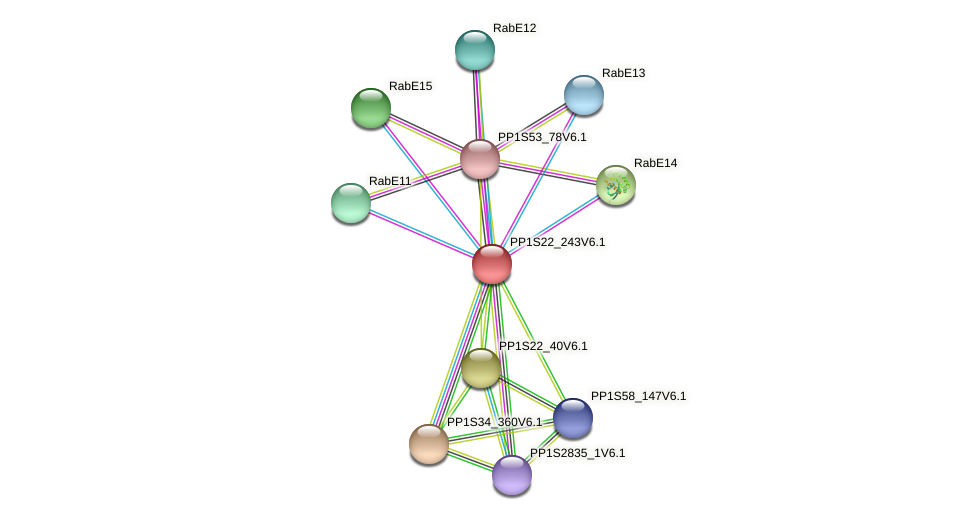 PP1S22_243V6.1 protein (Physcomitrella patens) - STRING interaction network