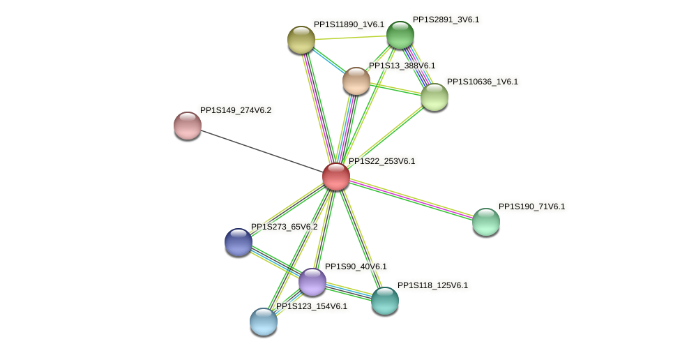 PP1S22_253V6.1 protein (Physcomitrella patens) - STRING interaction network