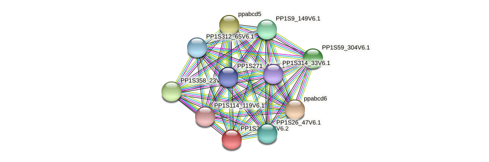 PP1S22_257V6.1 protein (Physcomitrella patens) - STRING interaction network