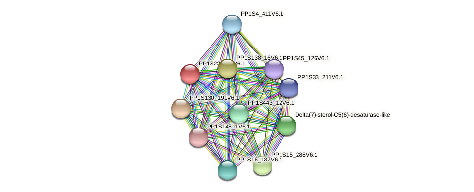PP1S22_283V6.1 protein (Physcomitrella patens) - STRING interaction network
