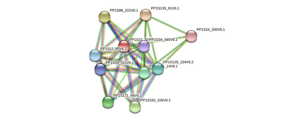 PP1S22_308V6.1 protein (Physcomitrella patens) - STRING interaction network