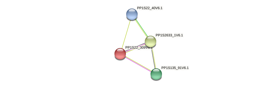 PP1S22_309V6.1 protein (Physcomitrella patens) - STRING interaction network