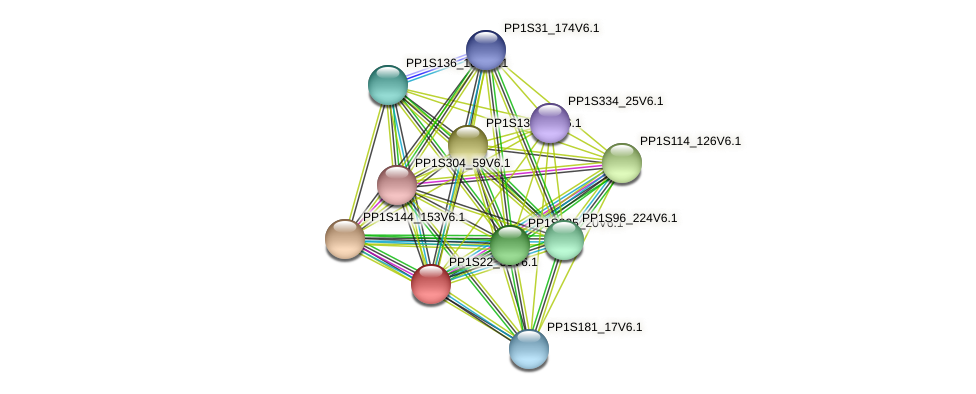 PP1S22_30V6.1 protein (Physcomitrella patens) - STRING interaction network