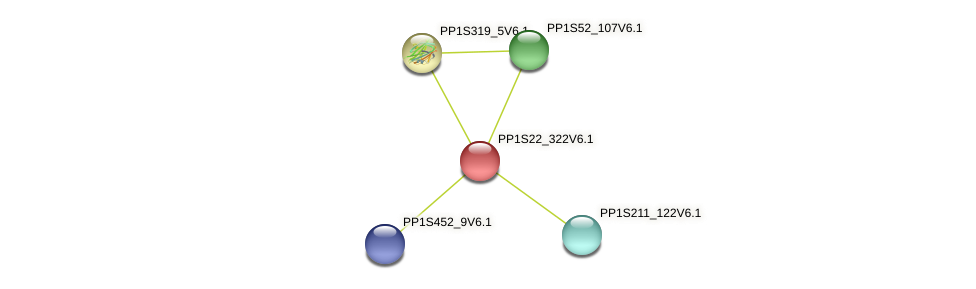 PP1S22_322V6.1 protein (Physcomitrella patens) - STRING interaction network