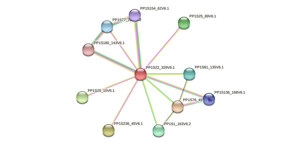 PP1S22_329V6.1 protein (Physcomitrella patens) - STRING interaction network