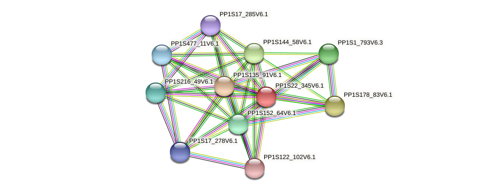 PP1S22_345V6.1 protein (Physcomitrella patens) - STRING interaction network
