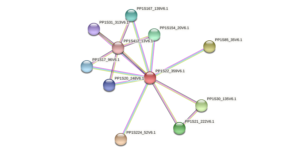 PP1S22_359V6.1 protein (Physcomitrella patens) - STRING interaction network