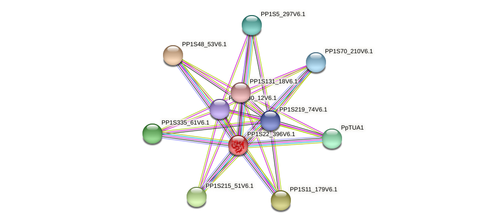 PP1S22_396V6.1 protein (Physcomitrella patens) - STRING interaction network