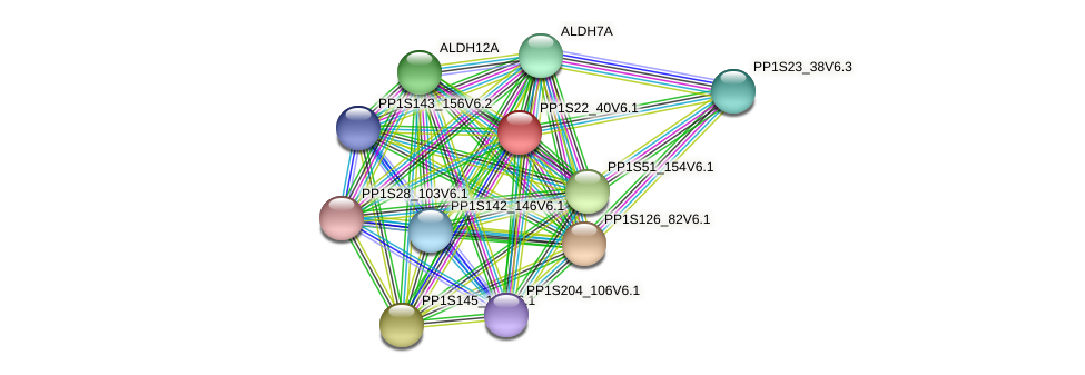 PP1S22_40V6.1 protein (Physcomitrella patens) - STRING interaction network