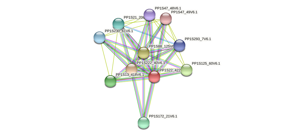 PP1S22_422V6.1 protein (Physcomitrella patens) - STRING interaction network