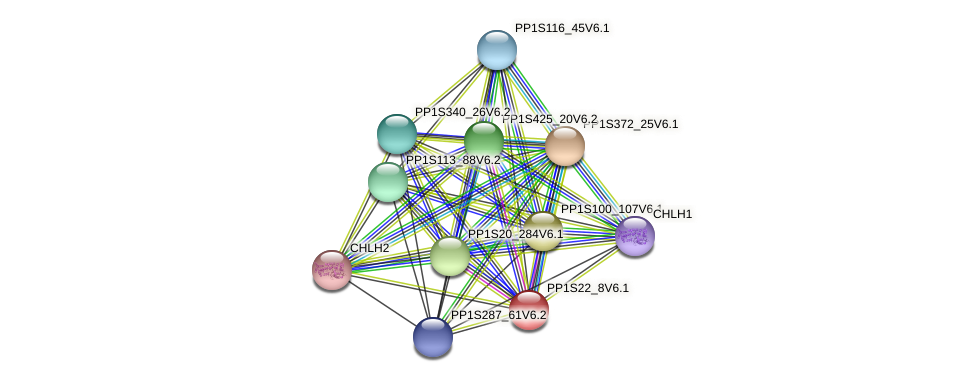 PP1S22_8V6.1 protein (Physcomitrella patens) - STRING interaction network