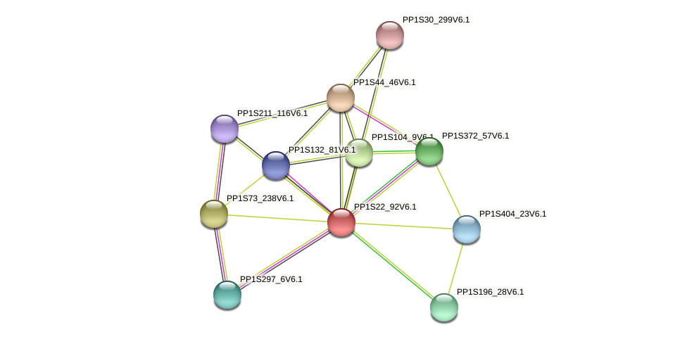 PP1S22_92V6.1 protein (Physcomitrella patens) - STRING interaction network
