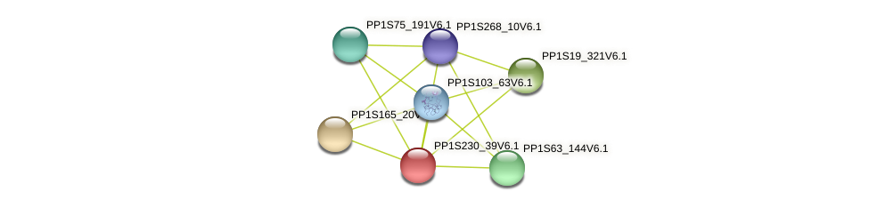 PP1S230_39V6.1 protein (Physcomitrella patens) - STRING interaction network