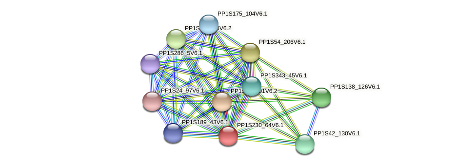 PP1S230_64V6.1 protein (Physcomitrella patens) - STRING interaction network