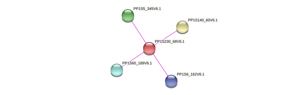 PP1S230_68V6.1 protein (Physcomitrella patens) - STRING interaction network