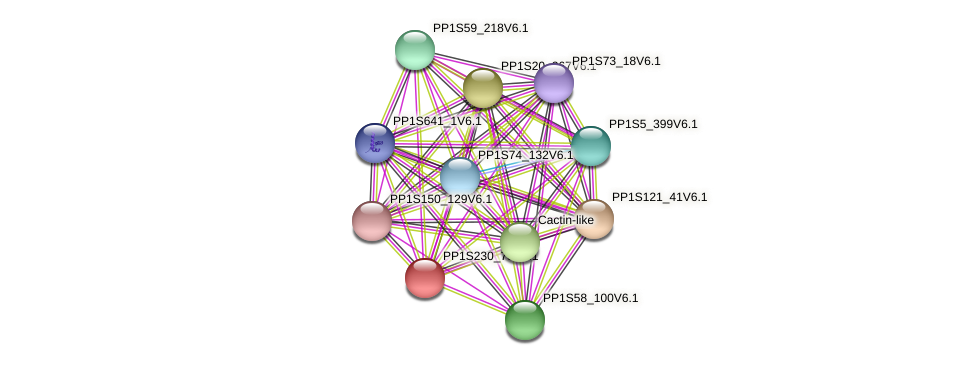 PP1S230_78V6.1 protein (Physcomitrella patens) - STRING interaction network